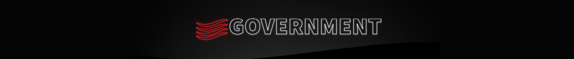 Government Banner